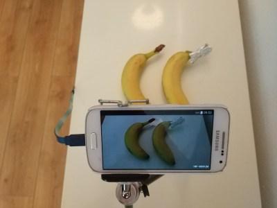 Wateetons Wetenschap: Je puberdochter de les lezen: de banaan-editie