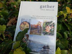 Meneer leest een boek: Gather van Gill Meller