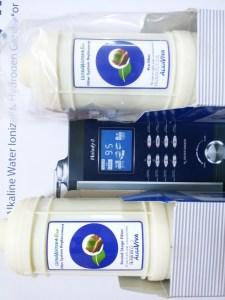AlkaViva h2 water ionizers filters -set