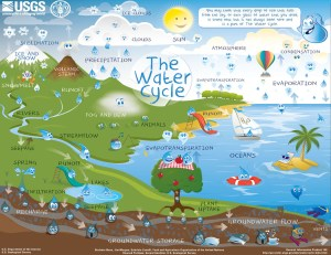 The Water Cycle for Schools and Students