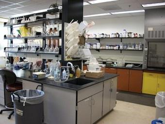Forest Soils Lab