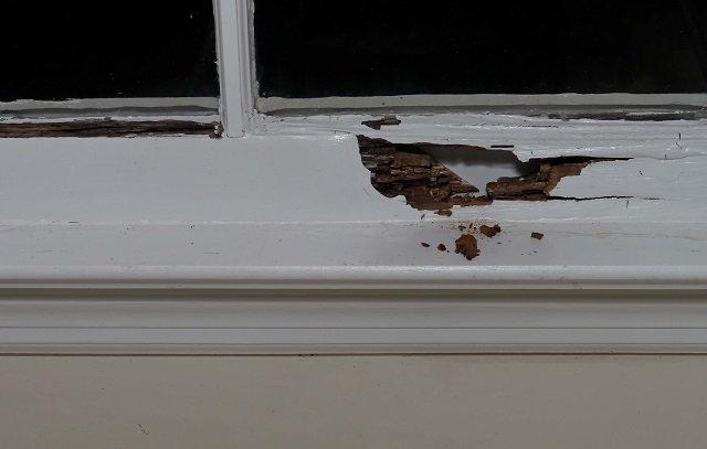 Kegunaan Wood Filler Untuk Kusen Jendela Rusak Dan Cara Aplikasinya