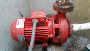 Stalker pump in well