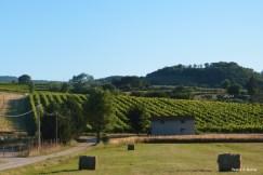Umbria Countryside, Farmland