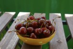 Cherries in a yellow bowl