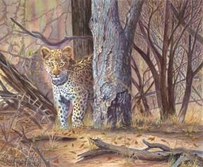 "Davis, ""A Leopard emerging from the Jungle"""