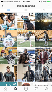 dolphins-ig