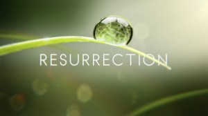 LOGO_-ONAIR_Resurrection_57778_302