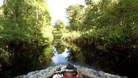 7 Minute Jungle JetSki Ride