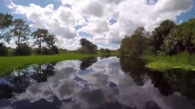 Jetskiing: canal and airboat trail exploring on the St Johns River – YouTube Stablilized