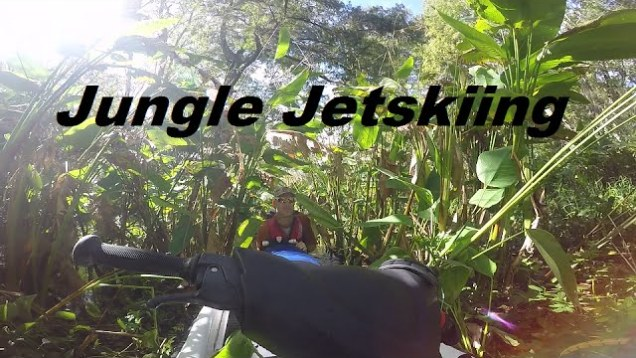 Jetskiing in a narrow, twisty, gator-infested jungle creek
