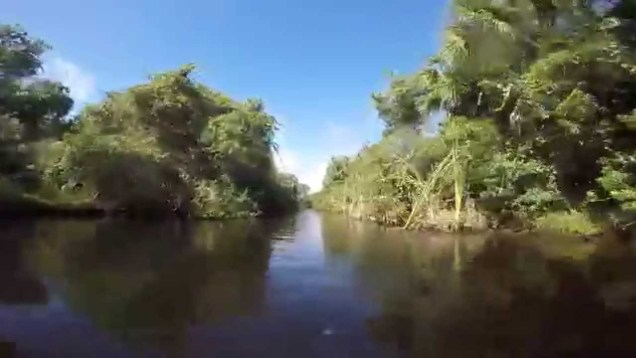 Jetskiing remote canals and airboat trails on the St Johns River