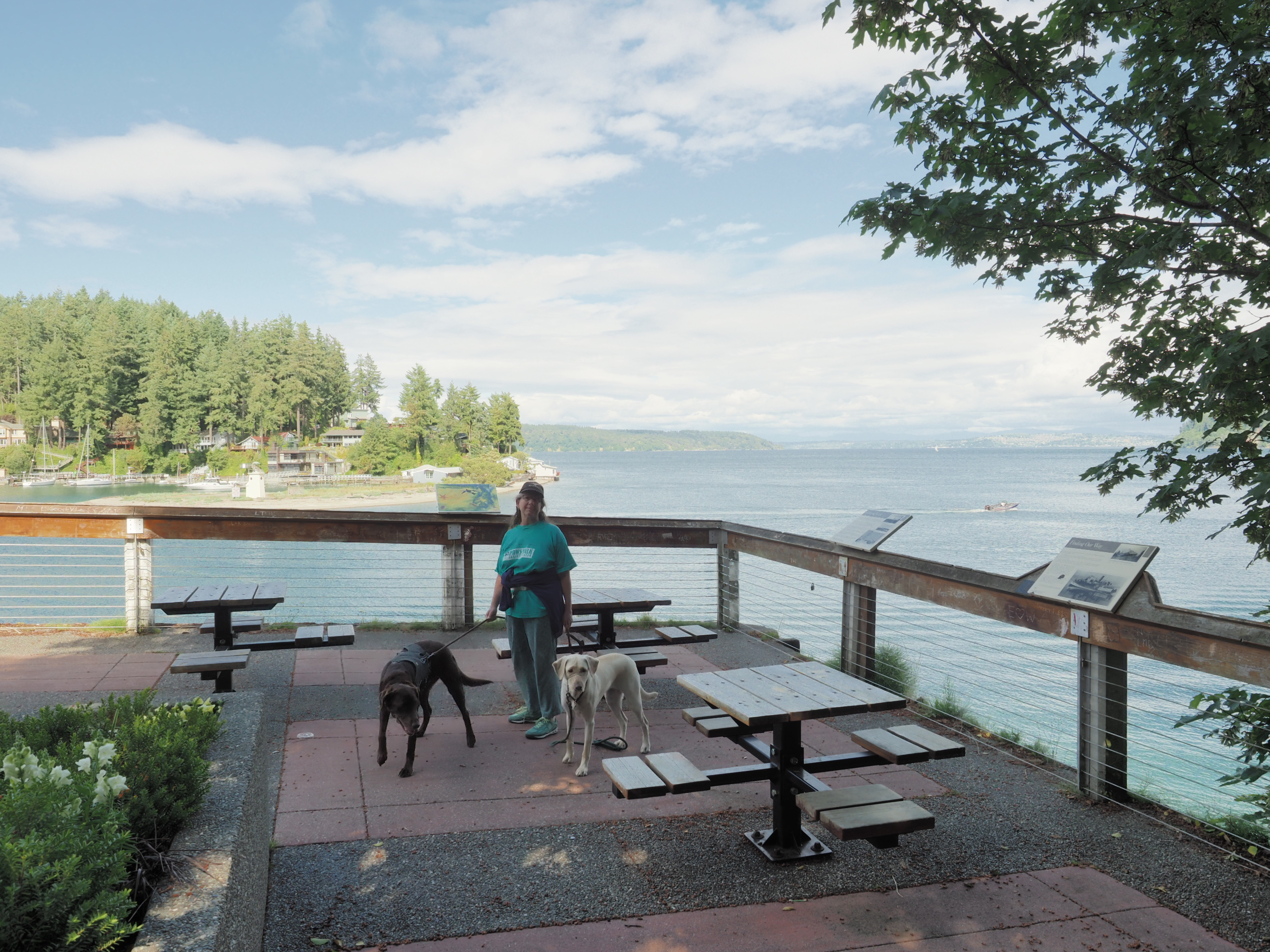 Seattle To Gig Harbor Anchorage June 13 14 2018 Water Dog Site