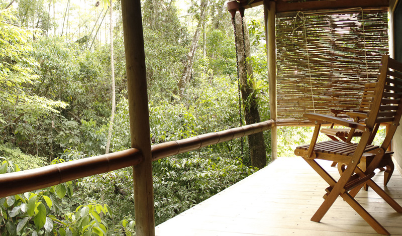 Dragonfly Suite 1 Villa Waterfall Villas in Costa Rica