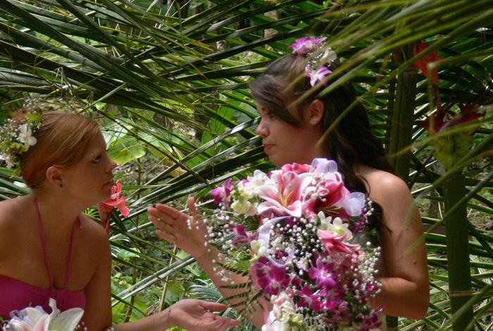 Waterfall Villas Wedding Package
