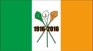 1916-2016 flag