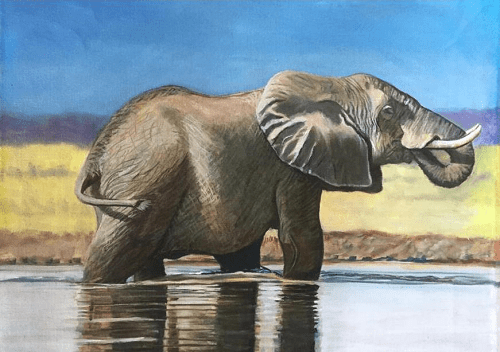 deirdre_dunne_artwork_elephant_drinking