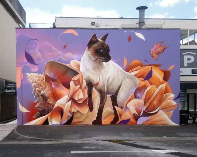 waterford_walls_festival