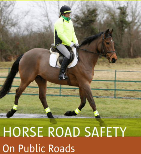 horse_road_safety