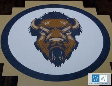 2015 Hugo Public Schools Buffalo