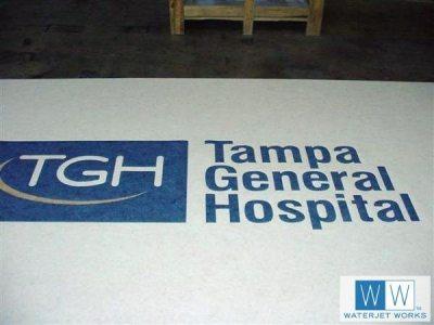 2007 Tampa General Hospital