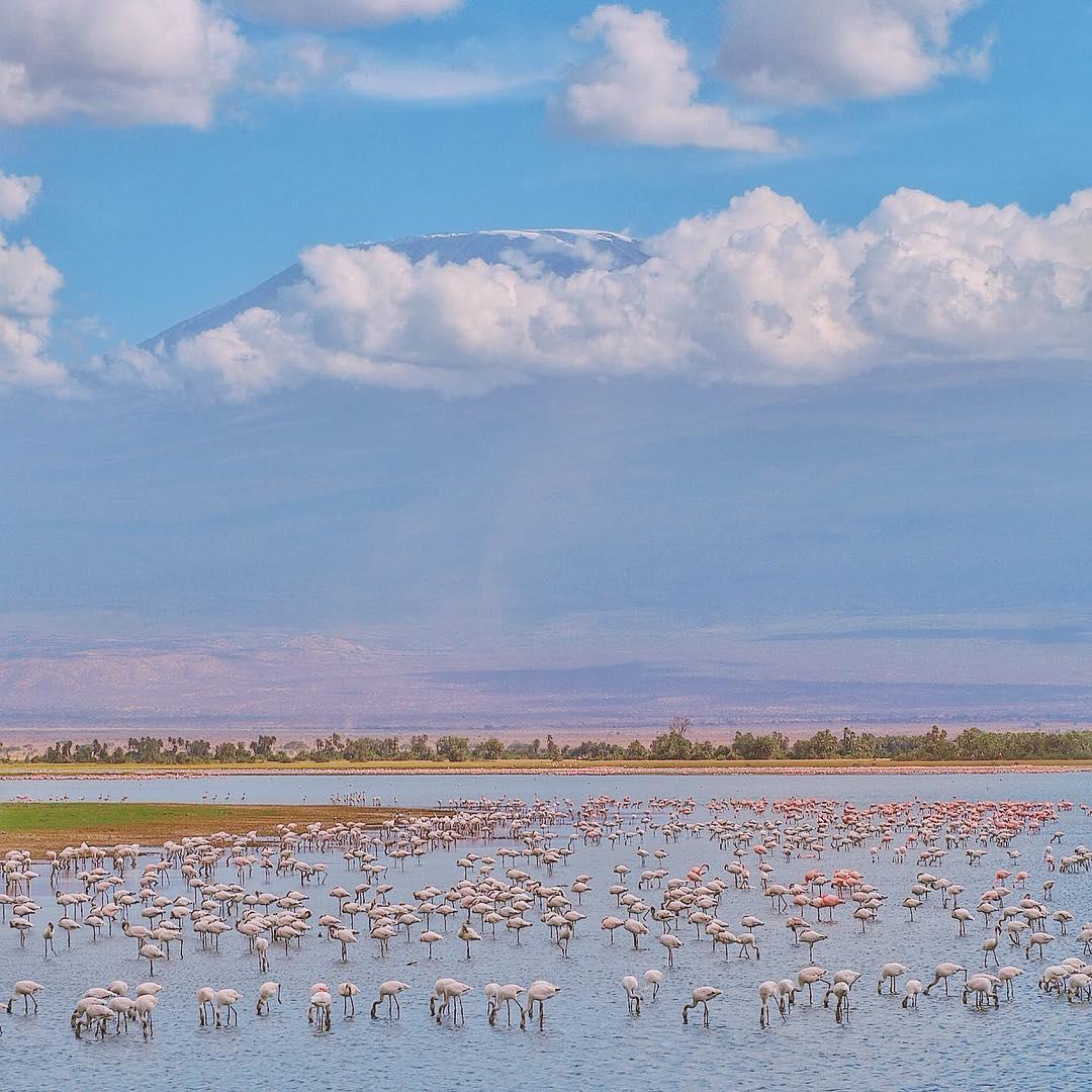 Human Encroachment, Pollution, Threatening Lake Nakuru's Biodiversity