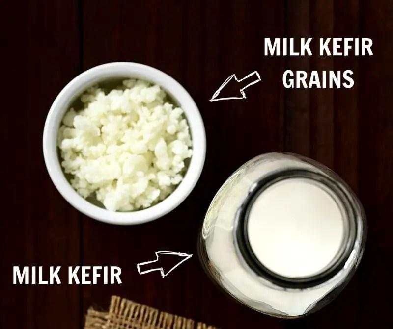 milk kefir and milk kefir grains