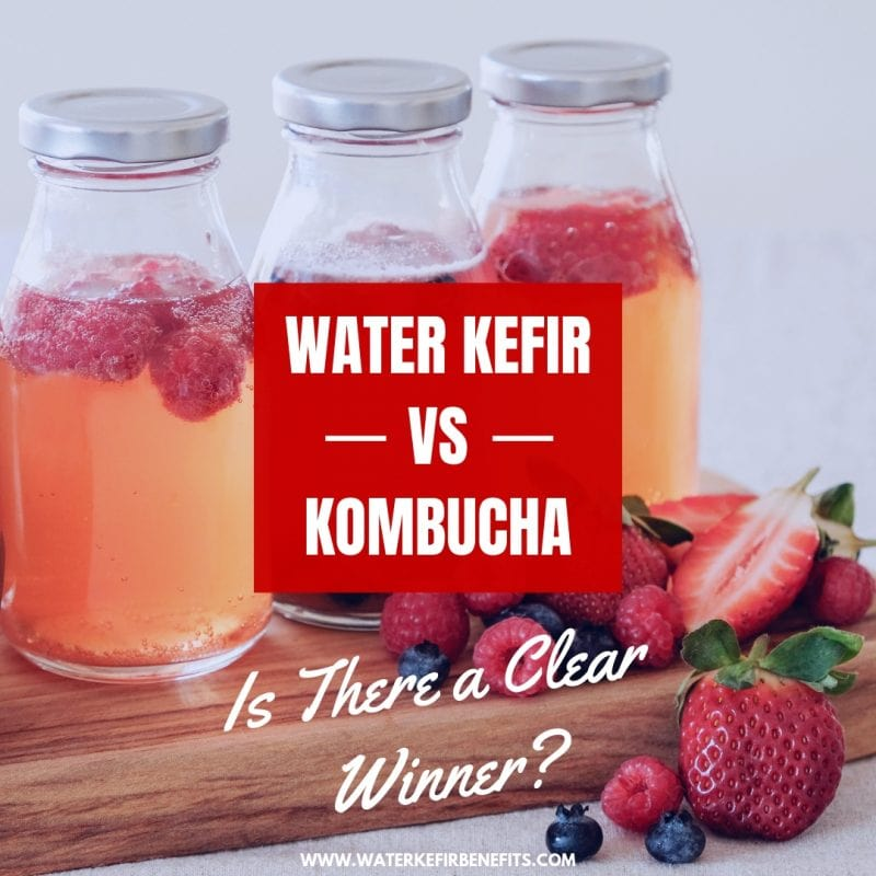 Water Kefir or Kombucha Is There a Clear Winner