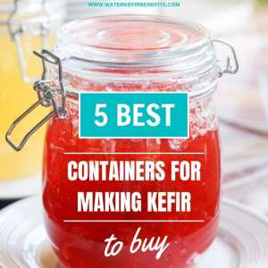 5 Best Containers for Making Kefir to Buy.