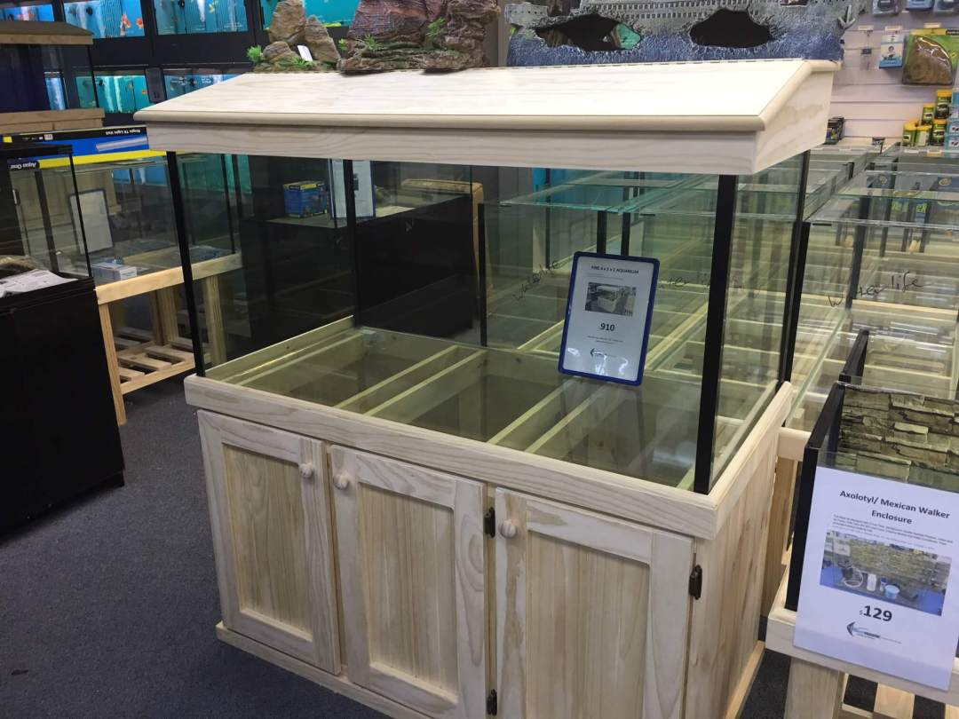 Best Fish Tank Stands