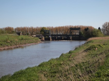 Downstream from Denver Sluice