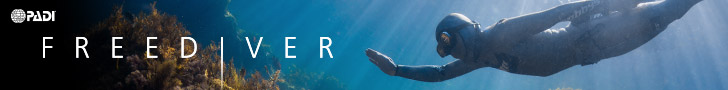 PADI Freediver courses in Melbourne, Hobart and Adelaide