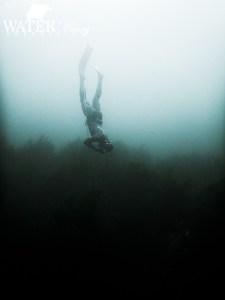 Freediving course Port Arthur Tasmania