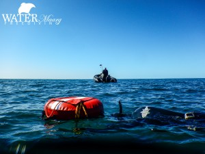 Freediving tour Melbourne