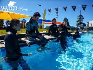Geelong Pool Freediving Course