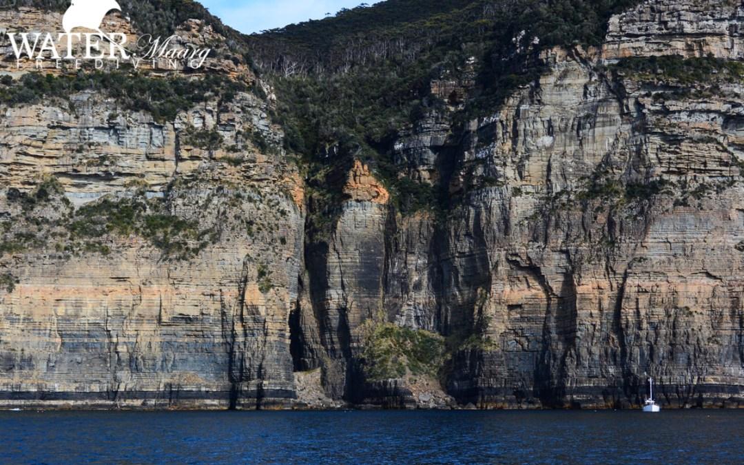 Freediving Tasmania February: courses and fun dives