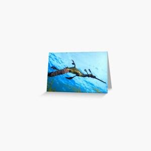 Greeting Card Weedy Seadragon Print