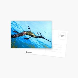 Postcard Weedy Seadragon