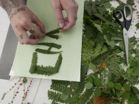 Making letters with the foliage