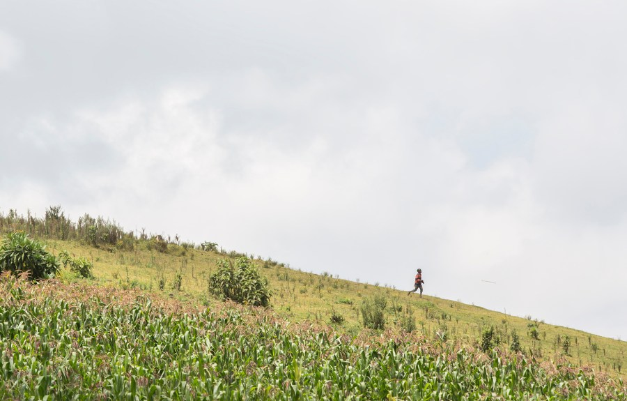 A young boy makes the trek to fetch water in Kenya.