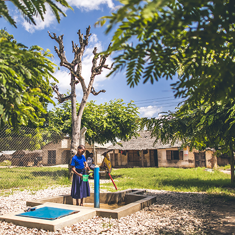 WM_Tanzania2018_SheridanPhotographs-0798