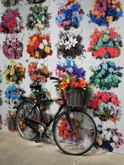 Bicycle_Flowers
