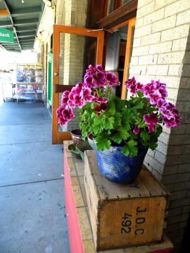 Penn Ave Pottery & Gallery Flowers