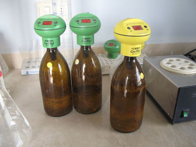 Laboratory biochemical oxygen demand bottles with digital meters placed on top.