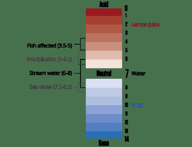 Une représentation visuelle de l'échelle de pH, avec des acides (pH inférieur à 7) en haut et des bases (pH supérieur à 7) en bas. Le pH de l'eau douce est au milieu, avec des valeurs comprises entre 6 et 7.