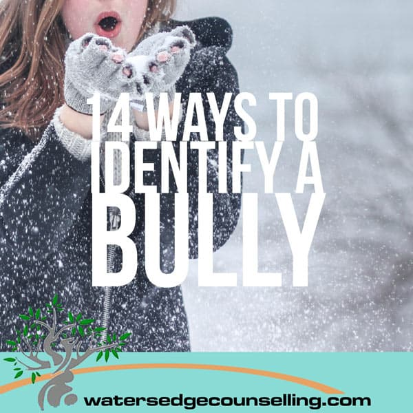 14-Ways-to-Identify-a-Bully