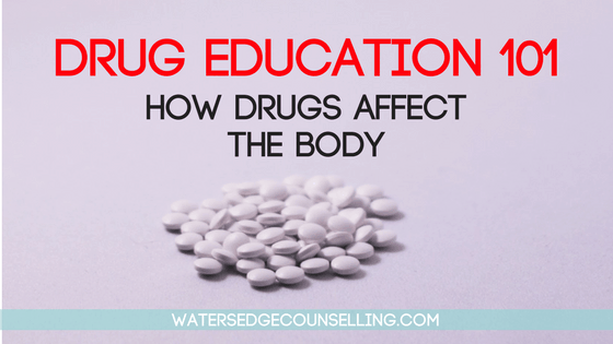 drug education 101-2