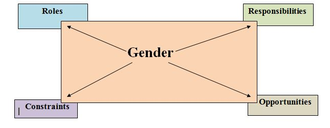 Gender sensitization