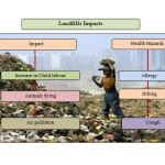 Impacts of landfill