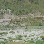 Land degraded due to Soil erosion resulting in barren land in watershed area